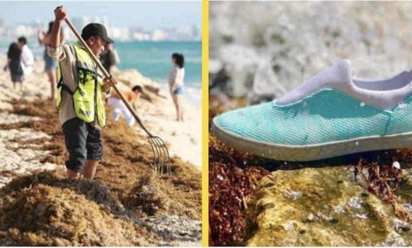 Crean calzado a base de SARGAZO y botellas de plástico en Yucatán